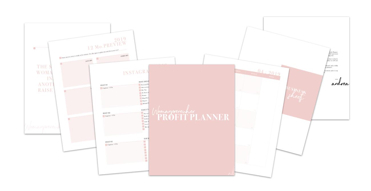 The Womanpreneuher Profit Planner